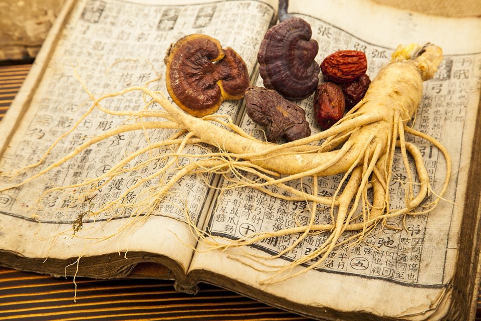 """Vua của các loại thảo dược giúp tăng khả năng """"thụ thai"""" cho chàng"""